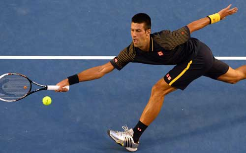 Djokovic destroys Ferrer to reach final